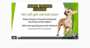 Pattern Games in Control Unleashed: Leslie McDevitt