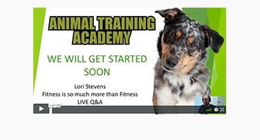 LIVE Q&A; Lori Stevens – Fitness Is So Much More Than Fitness