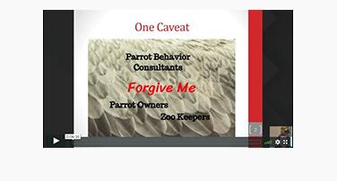 Feather Destructive Behavior, Screaming and Biting (In Parrots) with Pamela Clark