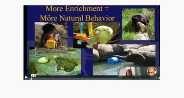 Zoo Time Management : Margaret Rousser