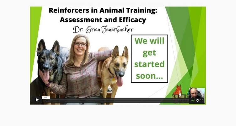 Reinforcers in Animal Training: Assessment and Efficacy