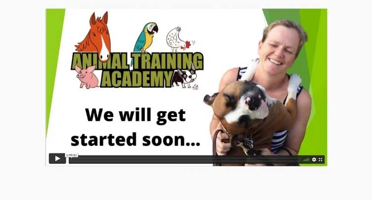 Trish McMillian – Food and resource guarding in shelter dogs